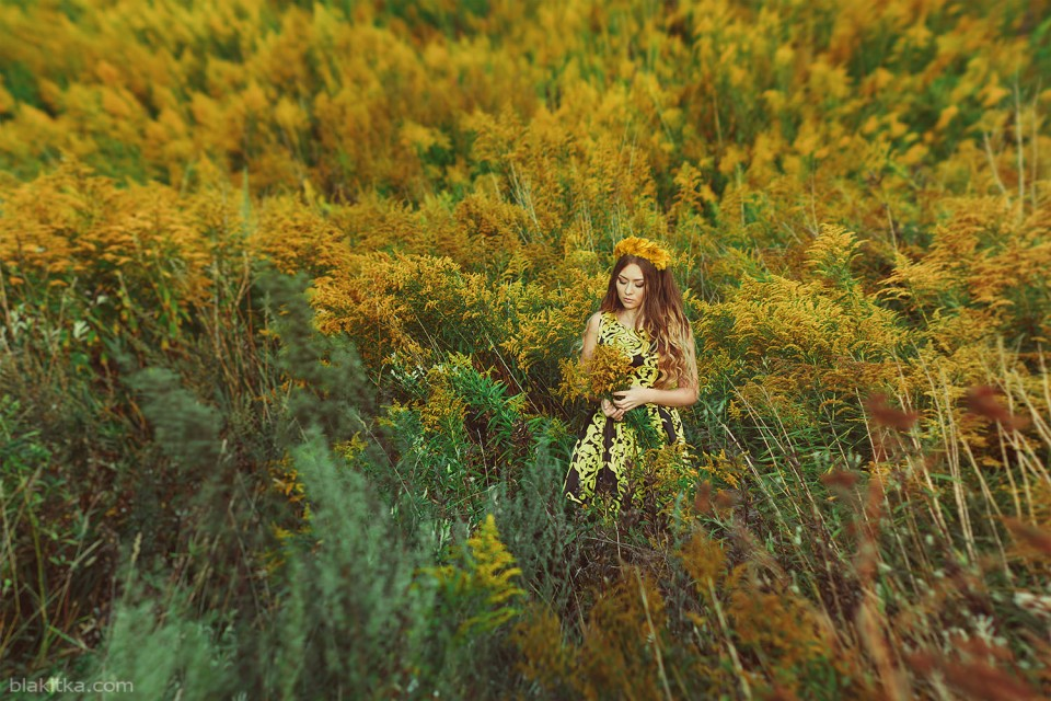 Yellow flowers, sunset, girl